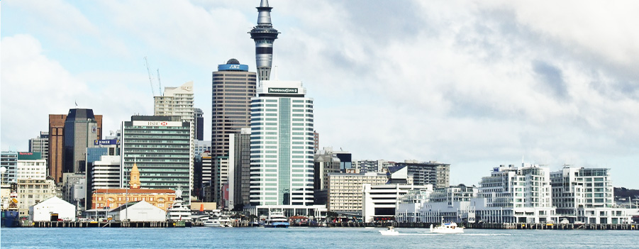 Auckland_New_Zealand_internship